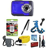 iON Cool-iCam s1000 (Blue) Deluxe Edition Bundle w/ Flexpod, LowePro Case, Floating Strap, 32GB ActionCam Wireless Sport Selfie