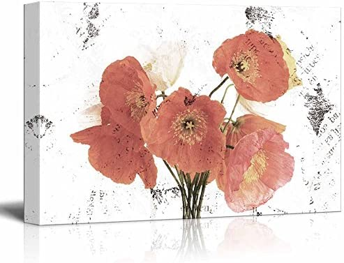 Red Poppy Flower on Grunge Abstract Background