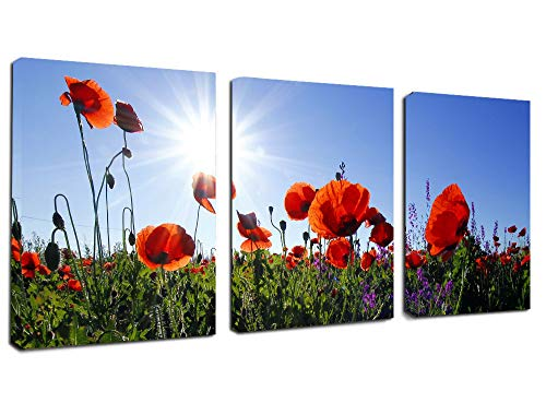 Kitchen Canvas Wall Art Red Poppies Flowers with Sun Artwork - 12
