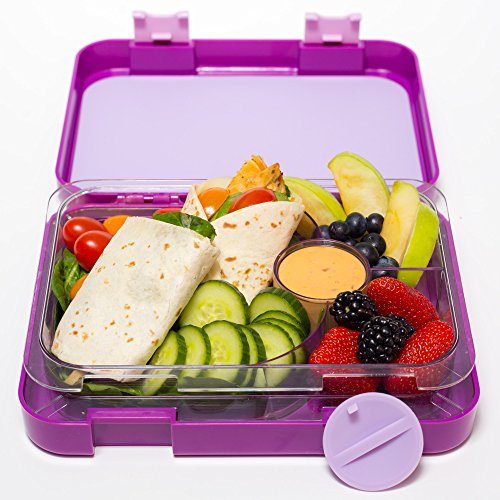 bento lunch box purple by mmm lunch buddies double leak proof container ne. Black Bedroom Furniture Sets. Home Design Ideas