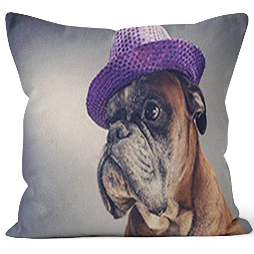 Nine City Boxer Dog with Party hat Throw Pillow Cushion Cover,HD Printing Decorative Square Accent Pillow Case,20