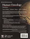 Human Osteology, Third Edition