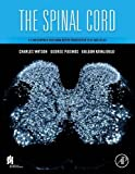 img - for The Spinal Cord: A Christopher and Dana Reeve Foundation Text and Atlas book / textbook / text book