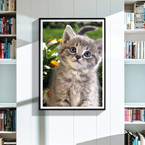 Narutosak 5D DIY Diamond Painting Cat Kitten Cross Stitch Craft for Home Wall Decor Gift (30x40cm) ()