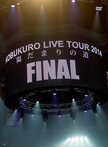 コブクロ/KOBUKURO LIVE TOUR 2014「陽だまりの道」FINAL at 京セラドーム大阪
