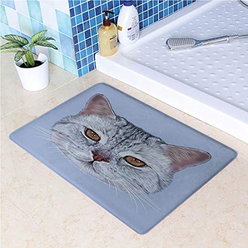 Kitchen Rugs Runners Non-Slip Rubber Backing Mats and Rugs Scottish Straight Kitty Portrait Pet Lovely Companion Hipster Animal Graphic Doormats Machine Washable(19.7x31.5 Inch)