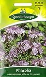Bienenfreund, Phacelia tanacetif., Samen für ca. 3 qm