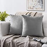 Phantoscope Set of 2 Soft Cozy Velvet Throw Pillow Solid Square Cushion Cover Mist Grey 20 x 20 inches 50 x 50 cm