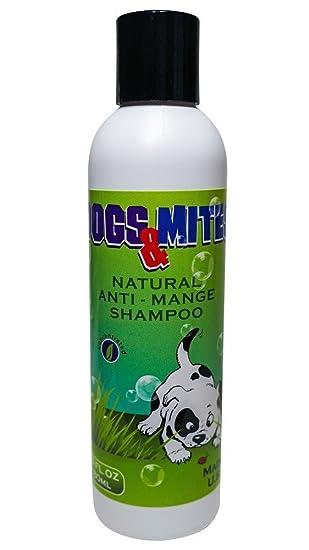 demodex Mange Champú Perros N mitesâ ® 6.0 oz: Amazon.es: Productos para mascotas