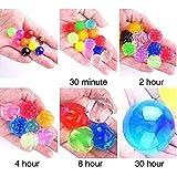 Jangostor Large Water Gel Beads 3.5 Ounces
