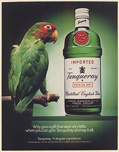 1988-tanqueray-gin-bottle-and-parrot-print-ad-66518