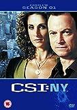 CSI: New York - Complete Season 1 [DVD]
