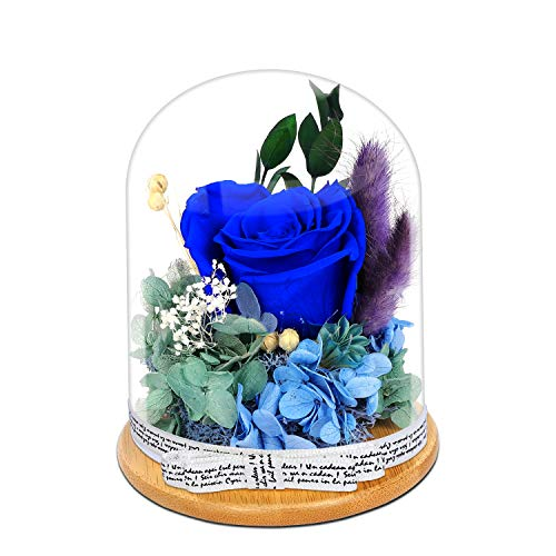 KING DOO Handmade Preserved Real Rose, Upscale Flowers, Eternal Life Never Withered Roses Artificial Flowers for Valentine's Day, Birthday, Anniversary, Christmas (Royal Blue)