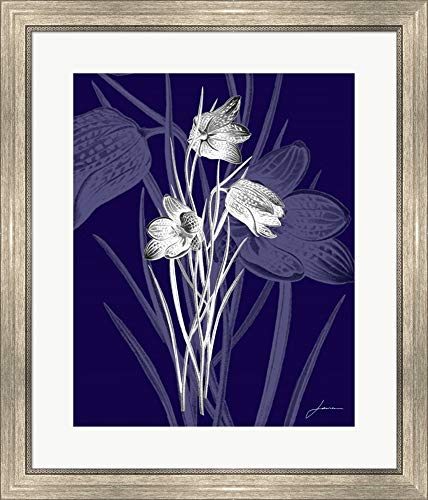 Jewel Stems IV by James Burghardt Framed Art Print Wall Picture, Silver Scoop Frame, 24 x 28 ()