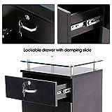 BarberPub Salon Storage Station Cabinet Locking