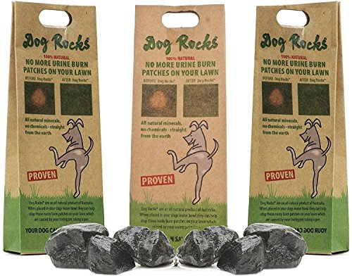 Dog Rocks - 100% Natural Grass Burn Prevention - Prevents Lawn Urine Stains - Three Small Bags - 6 Month Supply ()