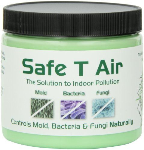 (Safe T Air with Natural Tea Tree Oil, 400 Gram)