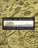img - for Images of Prehistory: Views of Early Britain by Peter Fowler (1990-11-30) book / textbook / text book