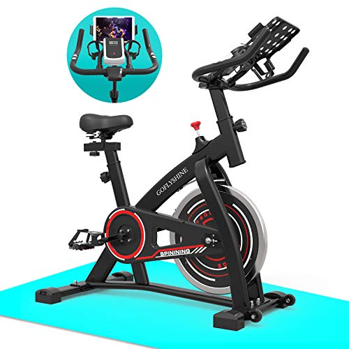 GOFLYSHINE Exercise Bikes Stationary,Exercise Bike for Home Indoor Cycling Bike for Home Cardio Gym,Workout Bike with 35…