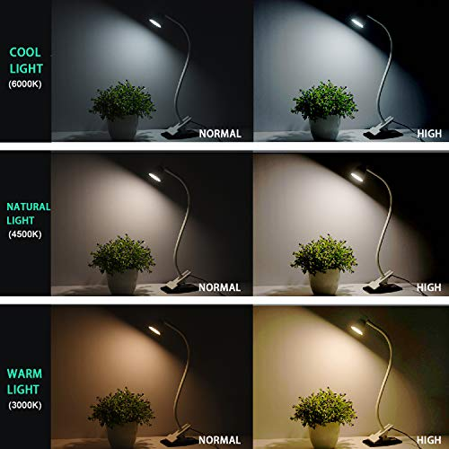 Most Popular Book Lights