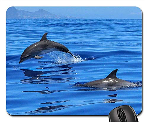 South Seas Hut - Mouse Pads - Dolphin Ocean Sea Marine Mammals Meeresbewohner