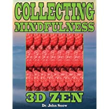 Collecting Mindfulness: 3D Zen