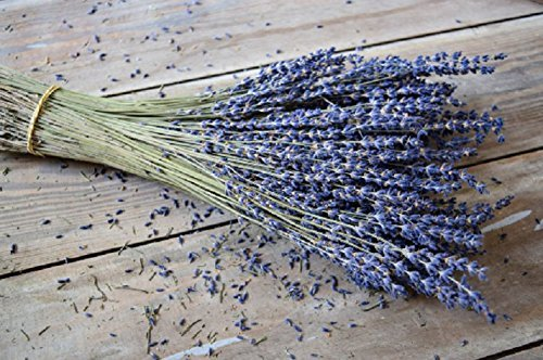 Dried Fragrant Bulk Lavender Bundle for Home Decor, Crafts, or Fragrance