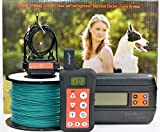 Remote Dog Training Shock Collar & Underground/ In-ground Electric Dog Containment Fence System Combo (1-Dog-Set)