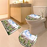Bathroom Non-Slip Rug Set digital photo manipulation fresco flowers of paris view from the window in Bath Mat Bathroom Rugs