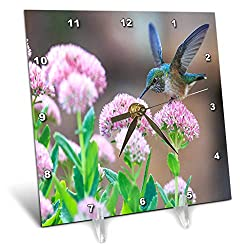 3dRose Lens Art by Florene - Flower Standouts - Image of Super Photo of Hummingbird On Pink Flowers - 6x6 Desk Clock (dc_302810_1)