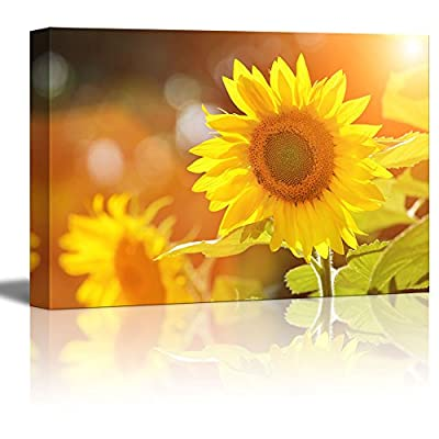 Canvas Prints Wall Art - Big Beautiful Yellow Sunflowers in a Sunny Day | Modern Wall Decor/Home Decoration Stretched Gallery Canvas Wrap Giclee Print & Ready to Hang - 24