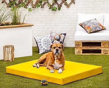 Amarillo Rocky PVC resistente al agua y masticar XL perro cama – 120 cm