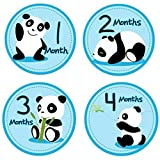 Panda Baby Monthly Sticker, Baby Belly Stickers, Baby Month Stickers, First Year Stickers Months 1-12