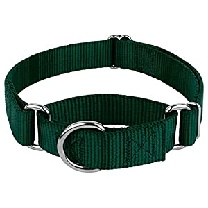 Country Brook Design Martingale Heavyduty Nylon Dog Collar - Green - Medium