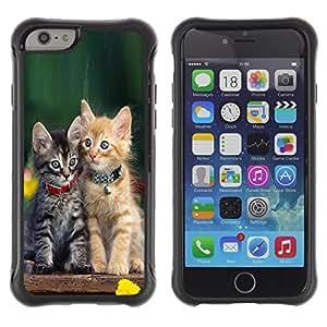 Suave TPU Caso Carcasa de Caucho Funda para Apple Iphone 6 / Cute Baby Kitten Cat Green Furry Pet / STRONG