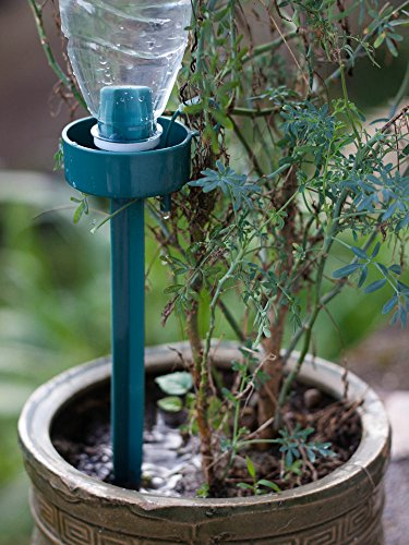 Plant Automatic Dripping Watering Device with Adjustable Flow Rate Self Watering System Watering Spikes for Vacation Plant Watering (Packing 6)