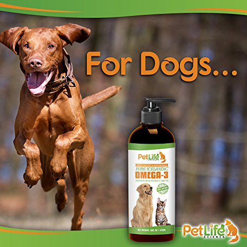 Pure Icelandic Fish Oil for Dogs - Premium, High Potency Omega 3 for Pets Improves Dry Itchy Skin and Coat, Excess Shedding, Joint Pain Relief for Dogs, EPA + DHA. 16oz Pump Dispenser
