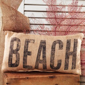 51ukTq37Q4L._SS300_ 100+ Coastal Throw Pillows & Beach Throw Pillows