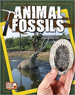 Animal Fossils (If Fossils Could Talk)