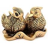 Couple de Canards Mandarins - Symbole D'Amour En Asie - Feng Shui