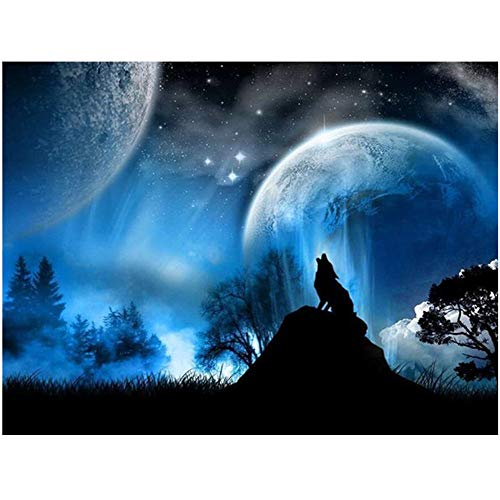 5D Diamond Painting Kits for Adults Full Drill 11.8x15.7 inch
