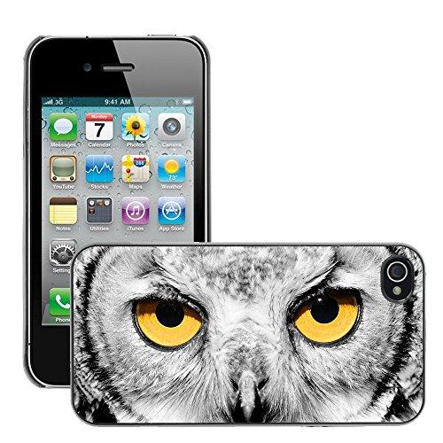 Premio Sottile Slim Cassa Custodia Case Cover Shell // V00002124 Portrait de hibou // Apple iPhone 4 4S 4G