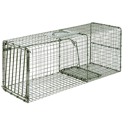 Duke Traps Heavy Duty Large Cage Trap for sale  Delivered anywhere in USA