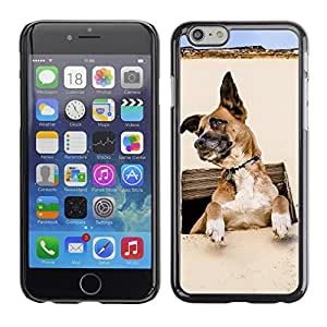 Super Stellar Slim PC Hard Case Cover Skin Armor Shell Protection // V0000876 Dog Puppy Pattern // Apple Iphone 6 4.7