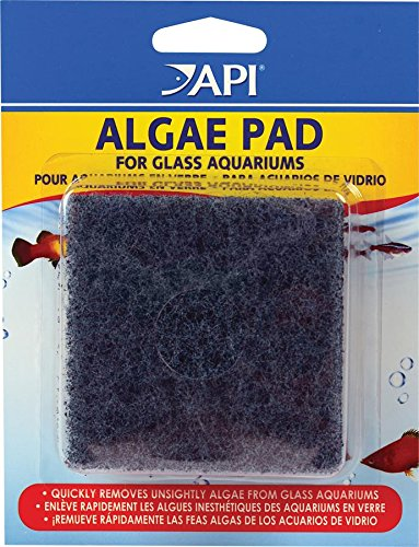 api-hand-held-algae-pad-glass