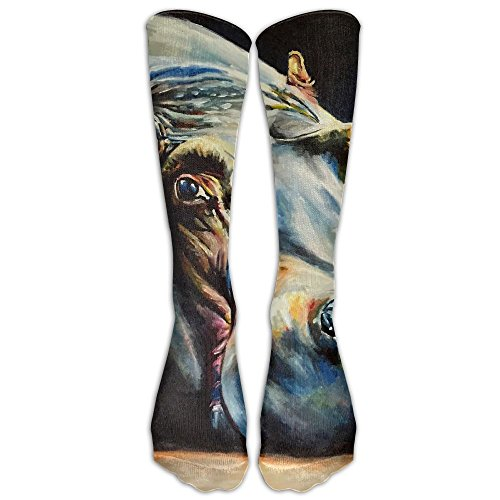 Long Dress Socks Over-the-Calf Tube Compression Socks Hippo Oil Painting Training Football Athletic Sports Socks (Hippo Crane)