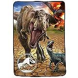 Universal Jurassic World - Juego de Ropa de Cama para niños (Microfibra, ultrasuave, tamaño Doble, 152 x 228 cm), Multicolor
