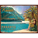 Exotic Kauai Metal Sign: Surfing and Tropical Decor Wall Accent