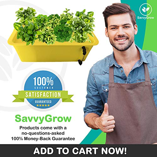 Herb Garden Starter Kit Indoor - Hydroponics Growing System with Nutrients and Herbs Seeds - Heirloom Non-GMO Cilantro, Parsley, Basil, Thyme, Mint - Complete All in One Ready to Grow (Herb Kit) by SavvyGrow (Image #5)