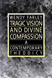 img - for Tragic Vision and Divine Compassion: A Contemporary Theodicy book / textbook / text book
